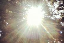 Sunlight / by FreeKLR NUrF8z