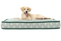 Brown Jordan Dog Beds / Now everyone in the family can enjoy Brown Jordan luxury with our new dog beds!