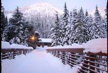 Winter Season / Winter, ski resorts, snowboards, ski/snowboard gear!