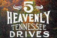 Tennessee / Some of our favorite facts, spots and stops from the Volunteer State.