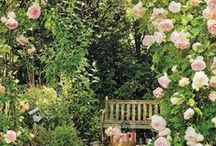 garden path ♤ / by Jean Strong [Rosecliff & Sommerset]