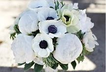 Wedding Ideas / Detail Ideas and Color Inspiration