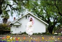 Nixon Library Weddings / The Nixon Presidential Library and Museum in Yorba Linda, CA