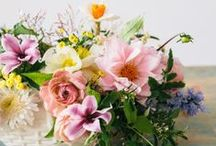 floral. / by taylor [cooper] dunlap