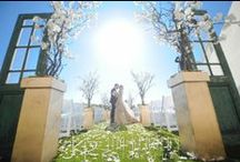 L'Ermitage Weddings / Weddings from L'Ermitage Hotel in Beverly Hills California.