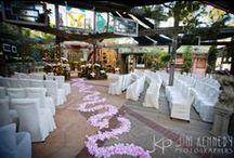 Tivoli Weddings / Tivoli Terrace and Tivoli Too in Laguna Beach, CA