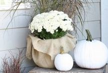 Fall Decor Inspiration / Inspiration and ideas for DIY fall crafts and decorations