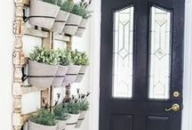 DIY Planters / Ideas and inspiration for making your own planters. Tips and tricks on how to care for and grow plants. The best indoor plants. Succulents, fiddle leaf figs, ferns, etc.