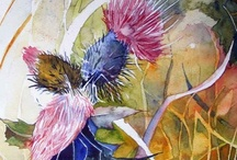 Disteln in Aquarell / Thistles in watercolor