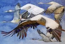 Kranich Aquarelle / Crane Watercolors / Ich mag die Kraniche, die Vögel des Glücks. Nach und nach sind diese Kranich Aquarelle entstanden. / I like the cranes, the birds of happiness. Gradually these crane watercolors were created.  #Aquarelle #Kraniche #Crane #watercolor