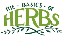 Garden: Herbs, Fruit, & Berries / by Linda Humphrey