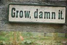Garden Signage / by Linda Humphrey