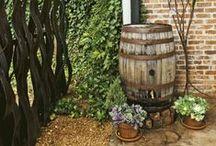 Farm: Rain Barrels and Traps / by Linda Humphrey