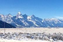 Jackson Hole Travel Inspiration / Traveling through the Grand Tetons and Yellowstone