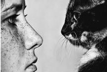Cats and their People / by Biljana Kroll