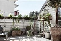 Balcony & garden / Lovely balcony and gardening ideas. Colorful and pastel.