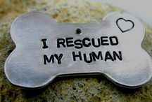 For the Doges / A board dedicated to things for my amazing little #pitbulls, Emma and Rhino