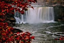 Kentucky. / by Ab & Lin Porter