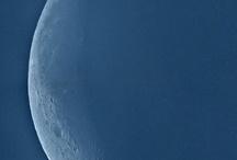 Blue Moon Magic / by Melissa Bozzuto