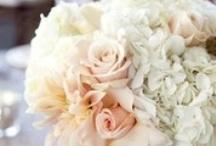 Wedding flowers / by Esther Catandella