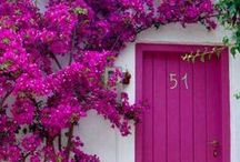 The Doors / Amazing, intricate, colourful doorways, windows and portals from around the world.