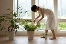 Grow / Green thumb dreams. / by Rebecca Diehl