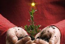 ≈★≈ Weihnachten ≈★≈ /  Inspirations Board für Weihnachten mit der Familie.