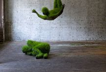 Environmental Art / Land art sculptures, living sculptures, topiaries, growing sculptures and an abundance of inspiration to create my own