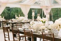 Weddings / by Anya Lunchenko
