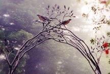 Wish I Had a Garden Like This / by Stefanie Pawlosky