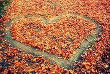Autumn / by Sarah Brockley
