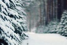 w i n t e r / Winter / by t h e f u l l e r v i e w