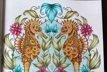 Lost Ocean - Oceano Perdido / livro de colorir