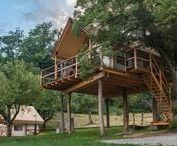 Tree House / Unique glamping treehouse in the crown of a mighty tree with a view over the vineyards creates a fairy-tale ambience and will make your childhood dreams come true.