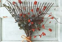 Autumn Decor Ideas / by Elyssa Baity