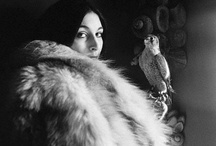 """Feathered Friends / """"Be as a bird perched on a frail branch that she feels bending beneath her, still she sings away all the same, knowing she has wings.""""  - Victor Hugo   / by Gigi Stoll"""