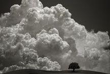 Cloud Observer / by Gigi Stoll