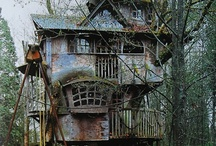 Treehouses  / Makes you want to live in the tree tops