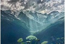 natural beauty / by Lisa Milam
