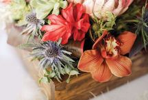 flowers...pretty, pretty flowers. / by Jennifer Williams