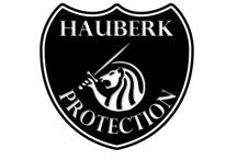 Hauberk Book 5