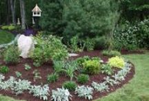Gardens + Landscaping / Beautiful gardens, flower beds and landscaping to make your home beautiful and inviting. Plants, flowers, trees, shrubs, and other ideas for beautiful spaces year round.