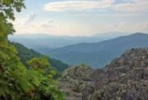 Ashe County NC / by Rebecca Williams-Evans