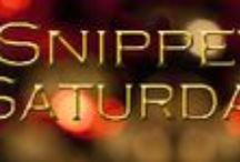 Snippet Saturday / Excerpts from Leah Braemel's books
