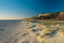 Omni Amelia Island Plantation Resort / https://www.omnihotels.com/hotels/amelia-island-plantation  Discover the natural beauty of Amelia Island.