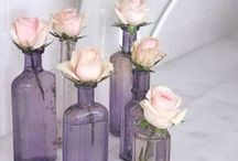 Bottles / by Beth Trask