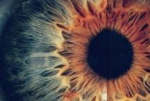 Eyes ~ Door to soul. / Eyes... an ocean where dreams reflect...