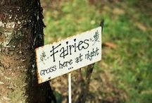 **Fairy Gardens**