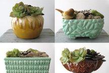 Green Fingers / Plants & stuff  / by Kelsey Hopton