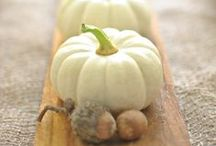 Fall / Recipes, DIY decorations and more to make the most of this season!